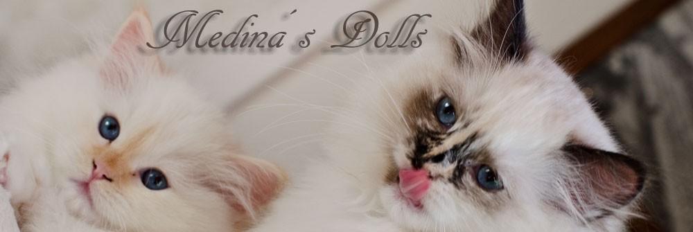 S*Medinas Dolls